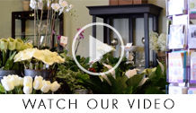 Wilmington Florist Video